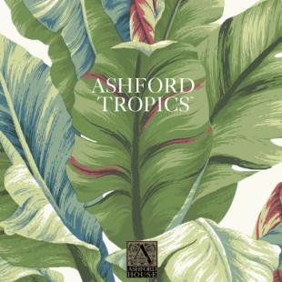 ASHFORD TROPICS